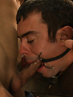 Sexy as hell studs Christian Wilde and Cole Streets blow their huge loads on a tied up boy