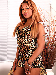 Hot curvy black tgirl from Detroit