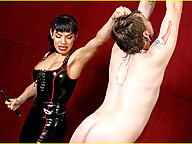 Mistress Foxxy is in a playful mood and she LOVES playing with her submissive little boy toys