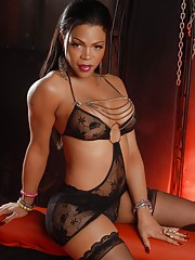 Chocolate transsexual Sheeba posing her irresistible beauty