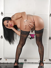 Irresistible transsexual Foxxy posing her beauty