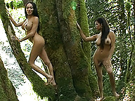 Cute Mia Isabella jerking off with Carmen Moore in the woods
