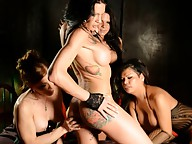 Beautiful Morgan pleasured in a TS dungeon orgy