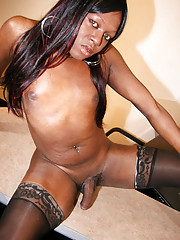 Hot black tgirl with a great look!