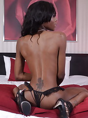 Beautiful black tgirl Little Jade stripping on bed
