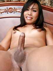 Newbie ladyboy strips and strokes