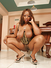 Skyy Black is a thick Black Ho with a hairless pussy. She shaves that snatch perfectly smooth because she knows it