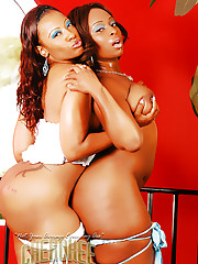 Cherokee and Skyy Black caress each others big boobies